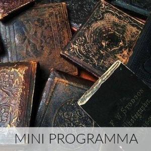Mini Programma
